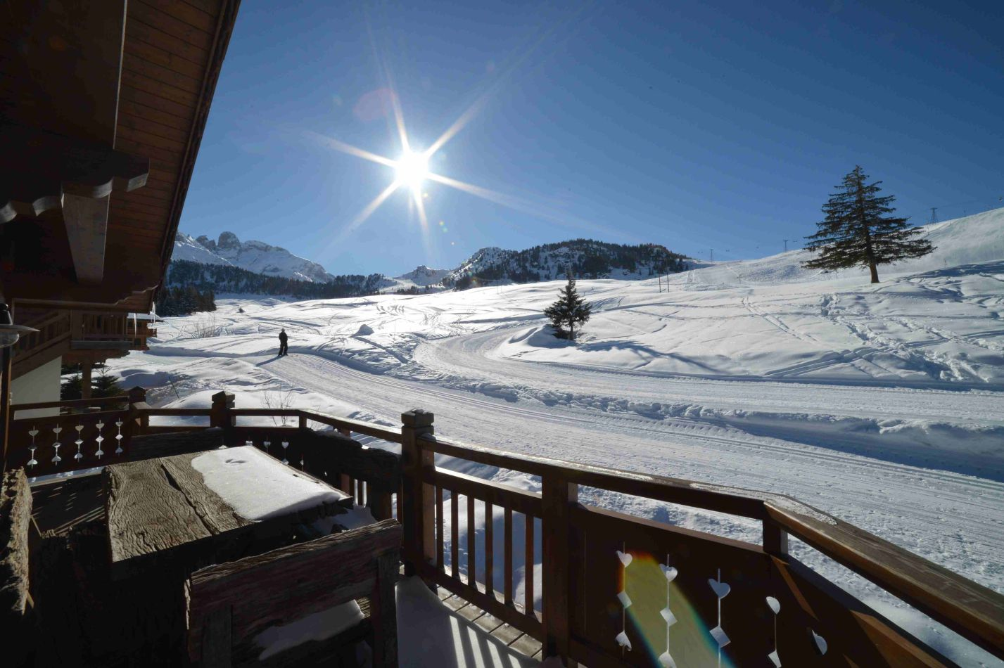 chalet-marmotte-balcony-4