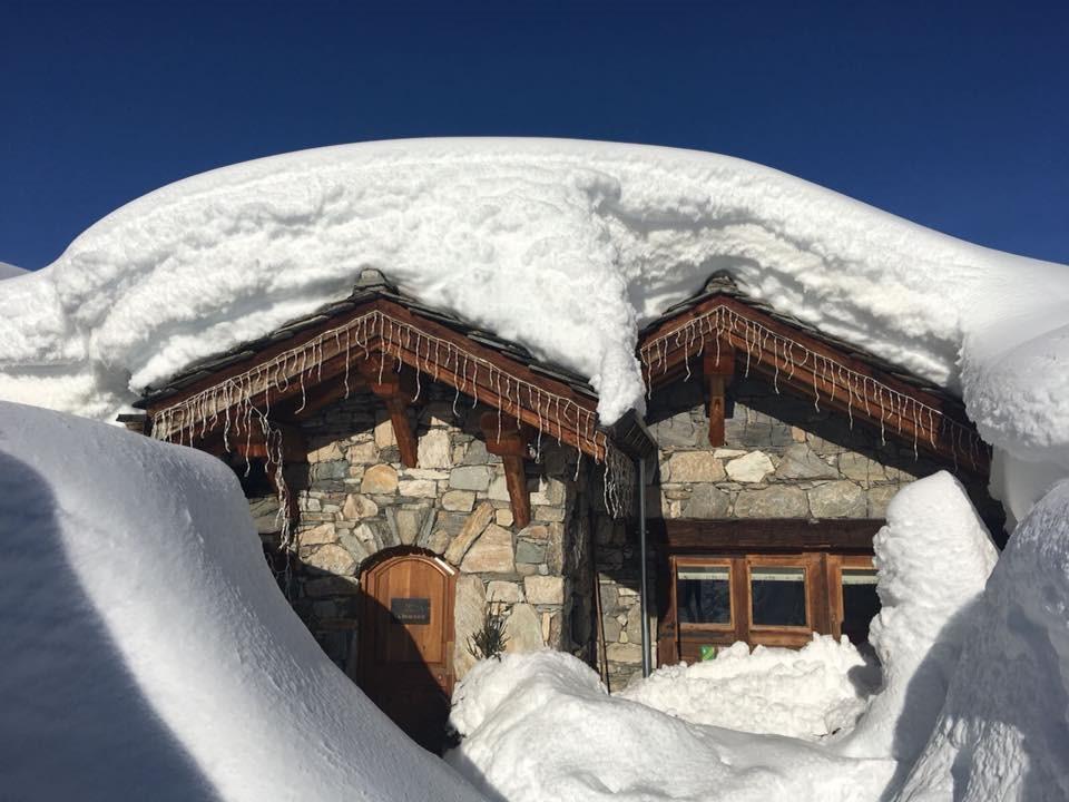 snowy-bergerie