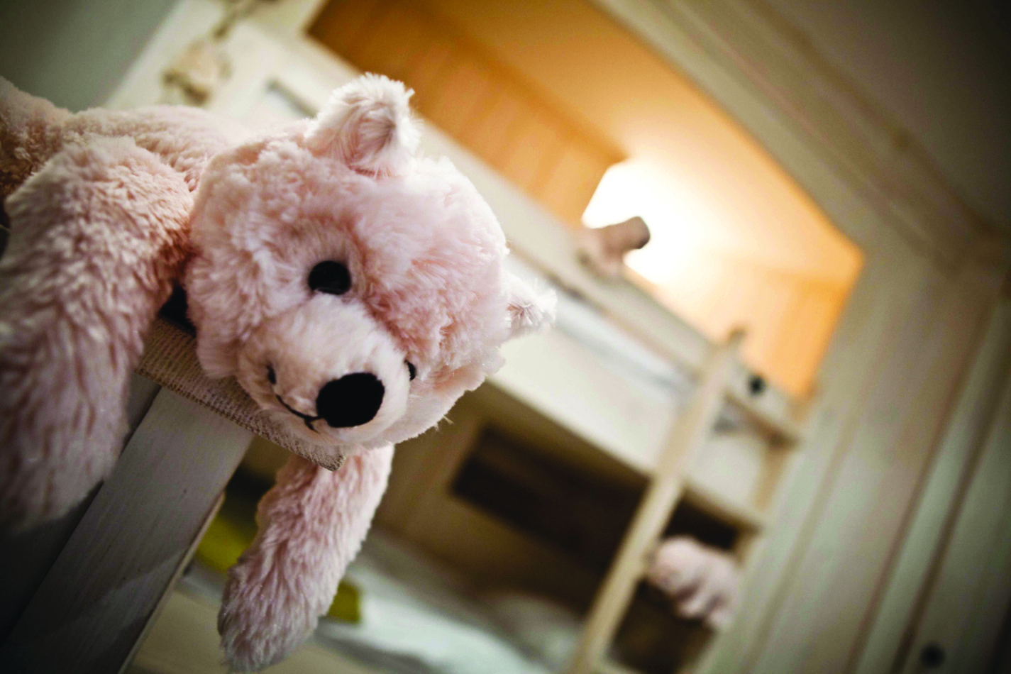 28-ours-en-peluche-dans-les-suites-teddy-bear-on-the-suite